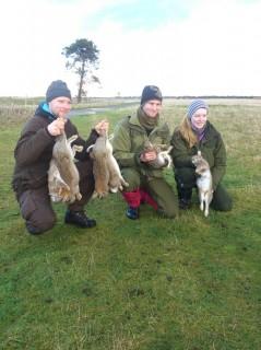 Skottland kaninjakt